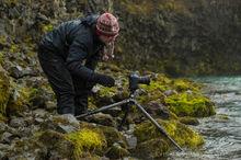 Photographer captures rainy Icelandic scene amognst moss-covered rocks