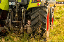 Young Icelandic boy hides behind a tractor during the annual autumn sheep roundup