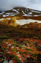 Autumn foliage and snowcapped mountain in the Icelandic Highlands